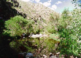 Sabino Canyon photo