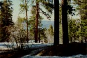 Big Bear Lake Photo 6