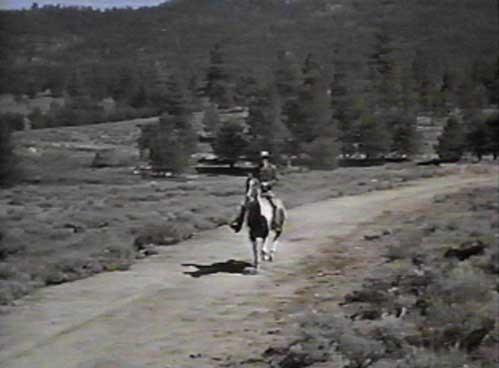 Bonanza Horse Biographies: Cochise