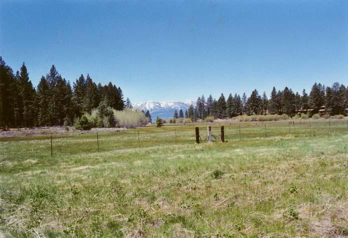 Bourne's Meadow Photo - 2