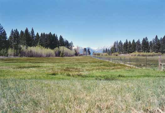 Bourne's Meadow Photo 10