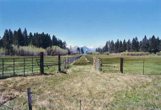 Bourne's Meadow Photo 13