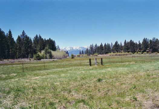 Bourne's Meadow Photo 16