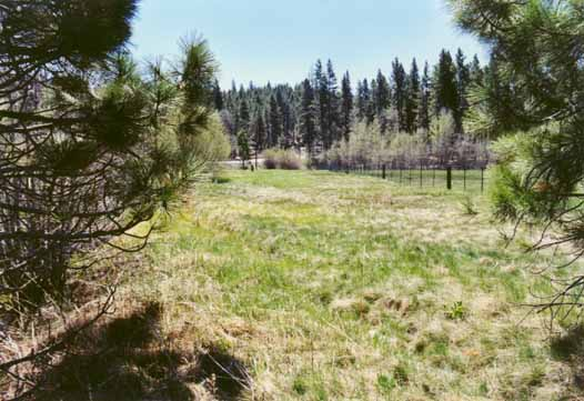 Bourne's Meadow Photo 14