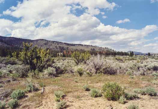 Davis Creek Park Photo 3