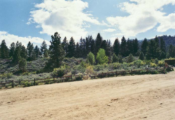 Davis Creek Park Photo 19