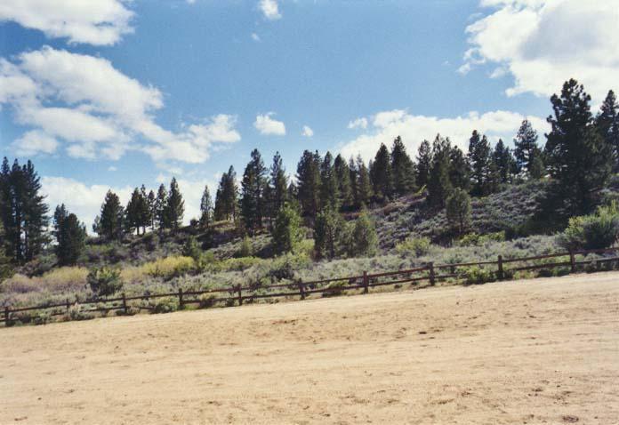 Davis Creek Park Photo 6