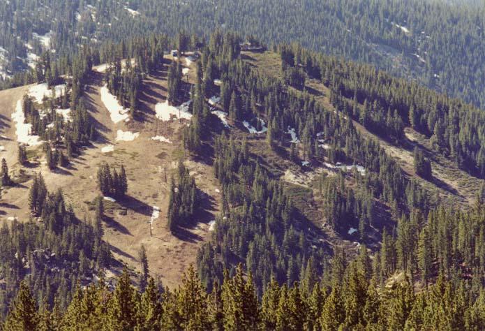 Diamond Peak Photo 1