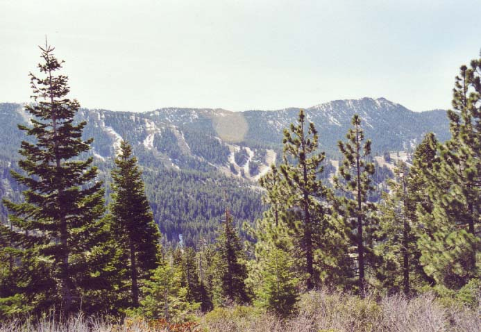 Diamond Peak Photo 3