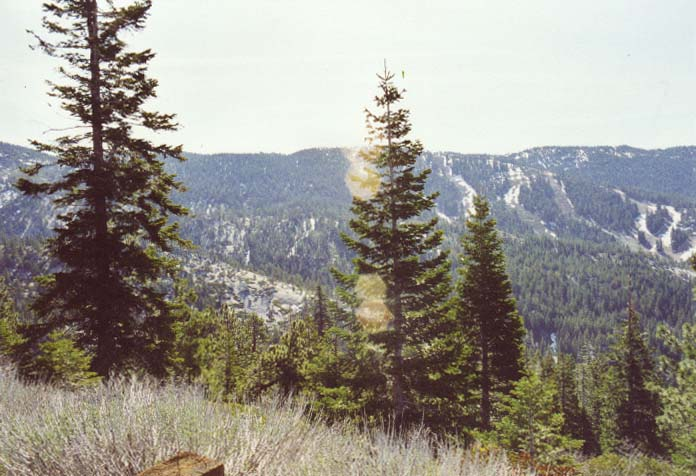 Diamond Peak Photo 4