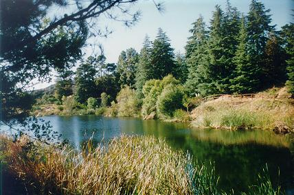 Franklin Lake Photo