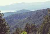 Rose Knob Peak Photo 22