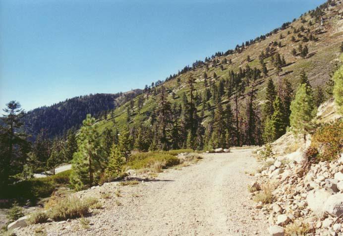 Rose Knob Peak Photo 15