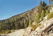 Rose Knob Peak Photo 16
