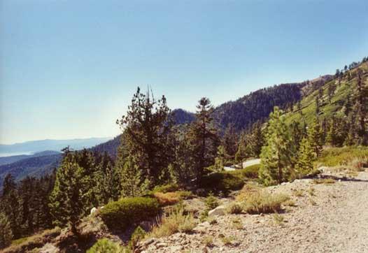 Rose Knob Peak Photo 5