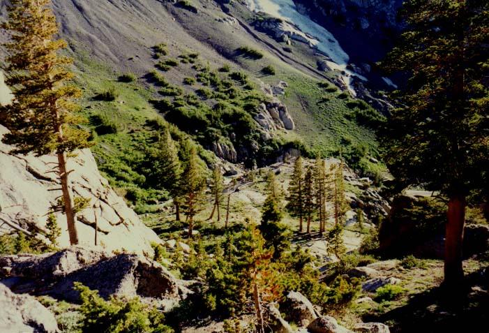 Sonora Pass Photo