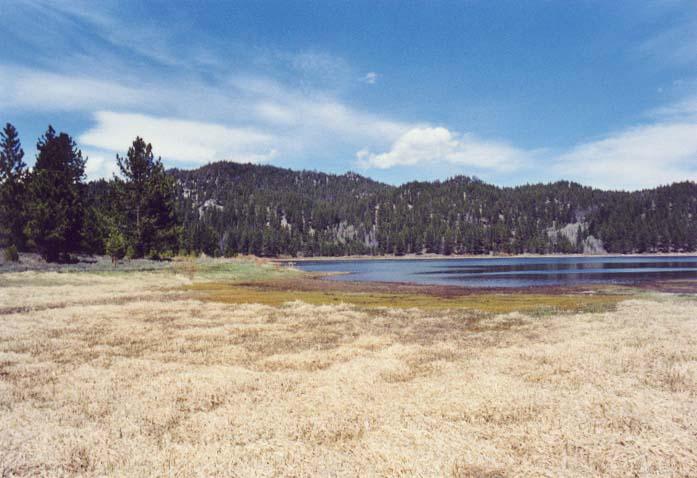 Spooner Lake Photo 19