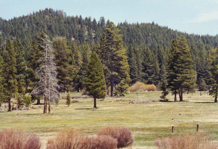 Spooner Meadow Photo 19