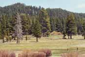 Spooner Meadow Photo 19
