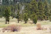 Spooner Meadow Photo 20