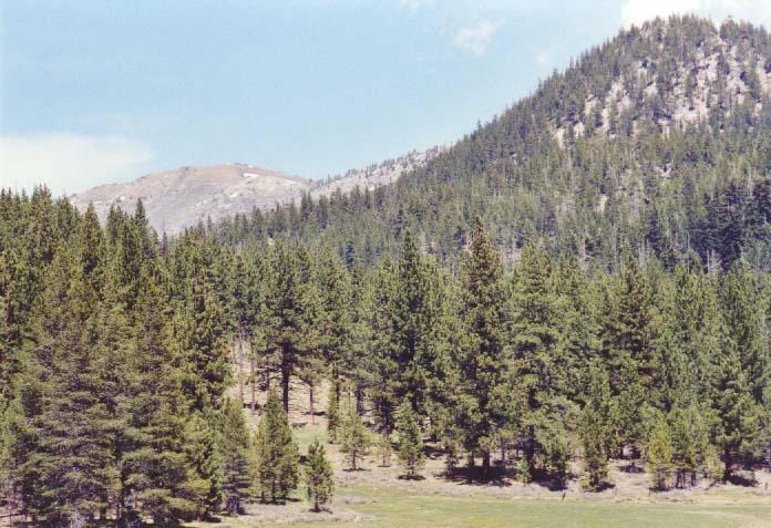Spooner Meadow Photo 21