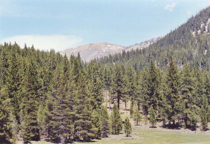 Spooner Meadow Photo 22