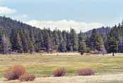 Spooner Meadow Photo 23