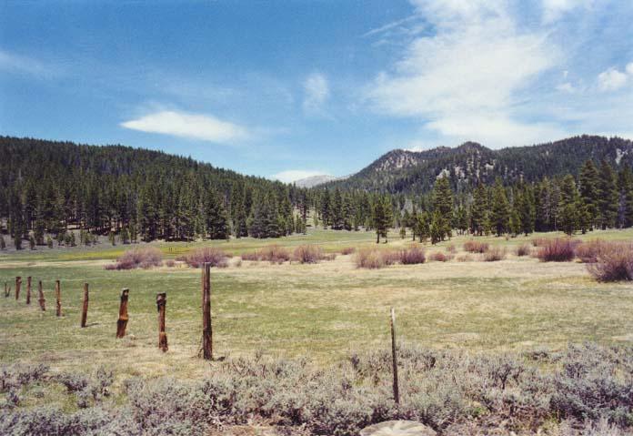Spooner Meadow Photo 27