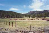 Spooner Meadow Photo 27