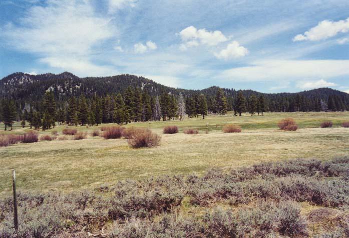 Spooner Meadow Photo 28