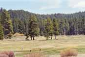 Spooner Meadow Photo 25