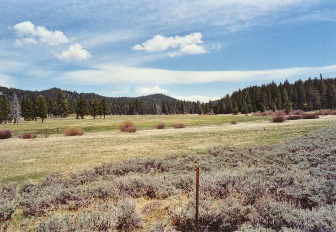 Spooner Meadow Photo 29
