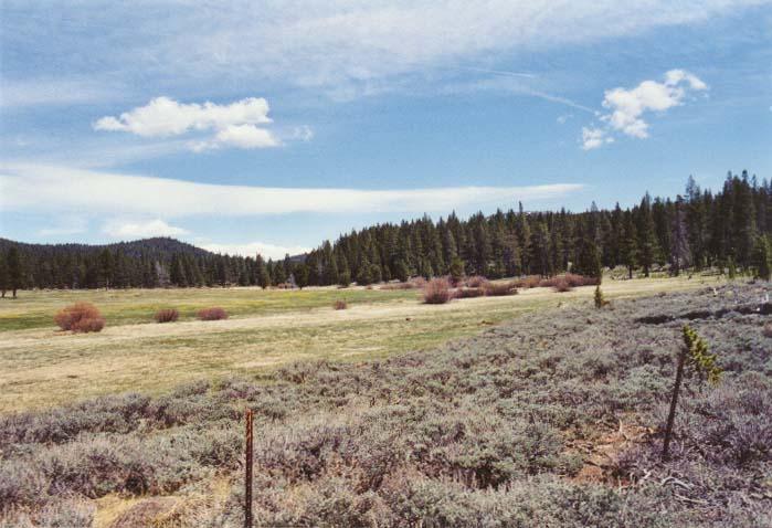 Spooner Meadow Photo 30