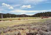 Spooner Meadow Photo 29