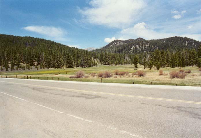 Spooner Meadow Photo 13