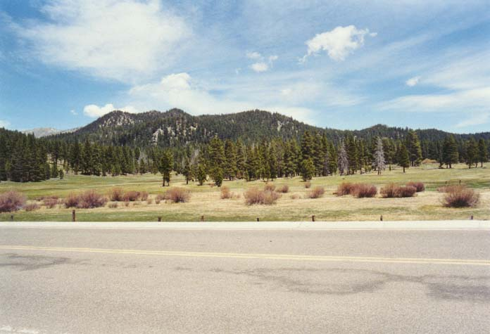 Spooner Meadow Photo 14