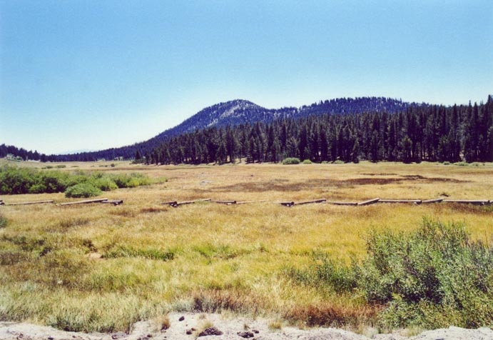 Tahoe Meadows Photo - 1