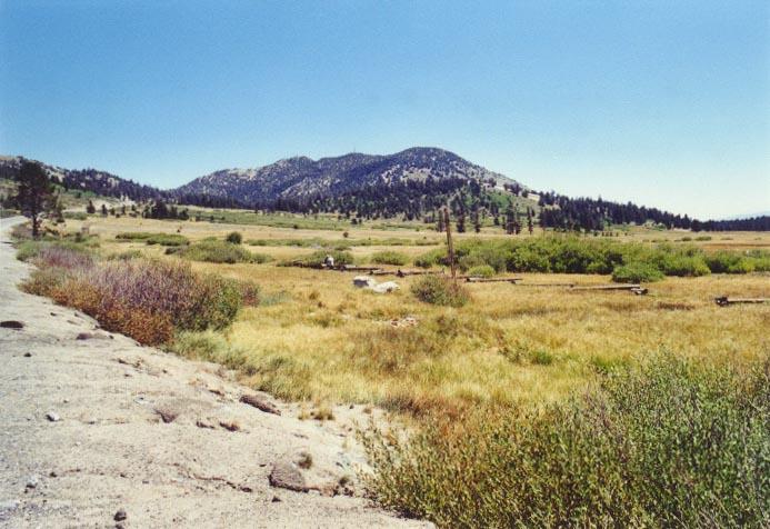 Tahoe Meadows Photo - 3