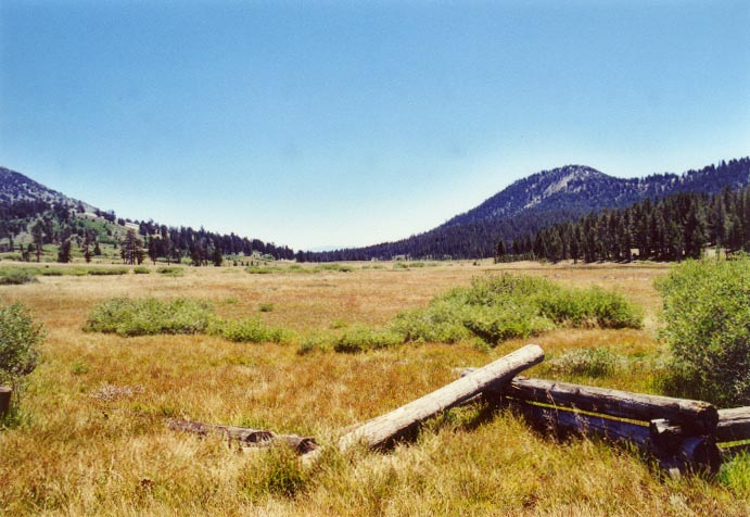 Tahoe Meadows Photo - 6