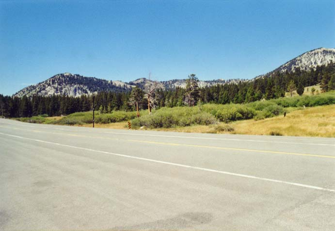 Tahoe Meadows Photo - 8