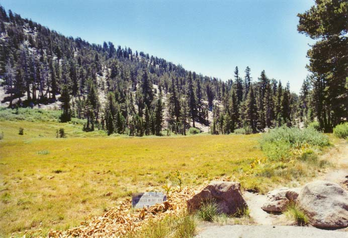 Tahoe Meadows Photo - 13