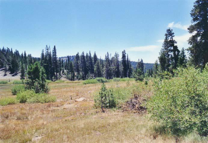Tahoe Meadows Photo - 17