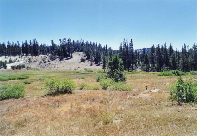 Tahoe Meadows Photo - 16
