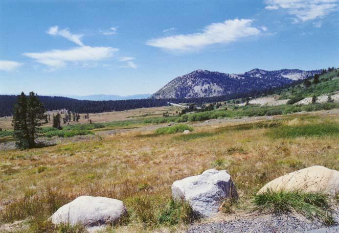 Tahoe Meadows Photo - 20