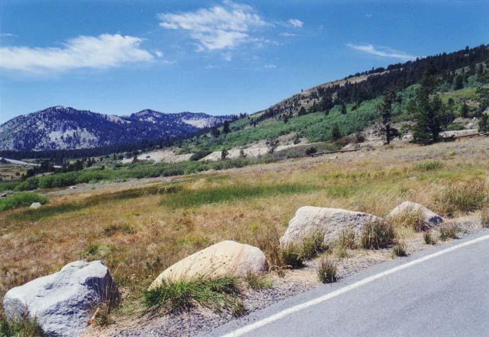 Tahoe Meadows Photo - 21