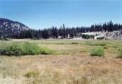 Tahoe Meadows Photo 19