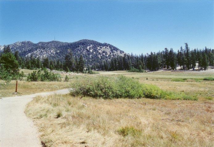 Tahoe Meadows Photo - 22