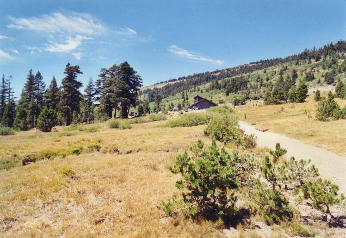 Tahoe Meadows Photo - 24