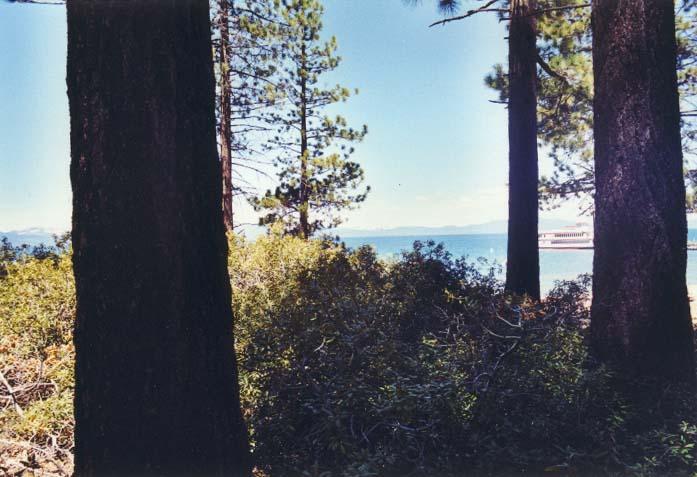 Zephyr Cove Photo